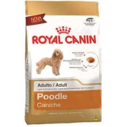 Alimento seco para Cães Adultos da Raça Poodle  -Royal Canin