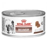 Alimento úmido Lata Canine e Feline Veterinary Diet Recovery Wet 195 g -Royal Canin