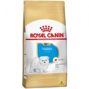 Ração Seca Royal Canin Puppy Maltês para Cães Filhotes