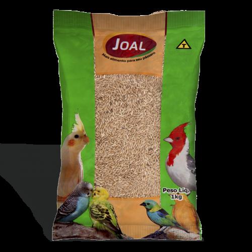 Alpiste  1kg -Joal