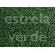 FORRACAO VERDE MUSGO C/ RESINA LISA (922) 2,00 LAR