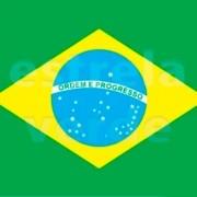 TNT BANDEIRA DO BRASIL TORCIDA
