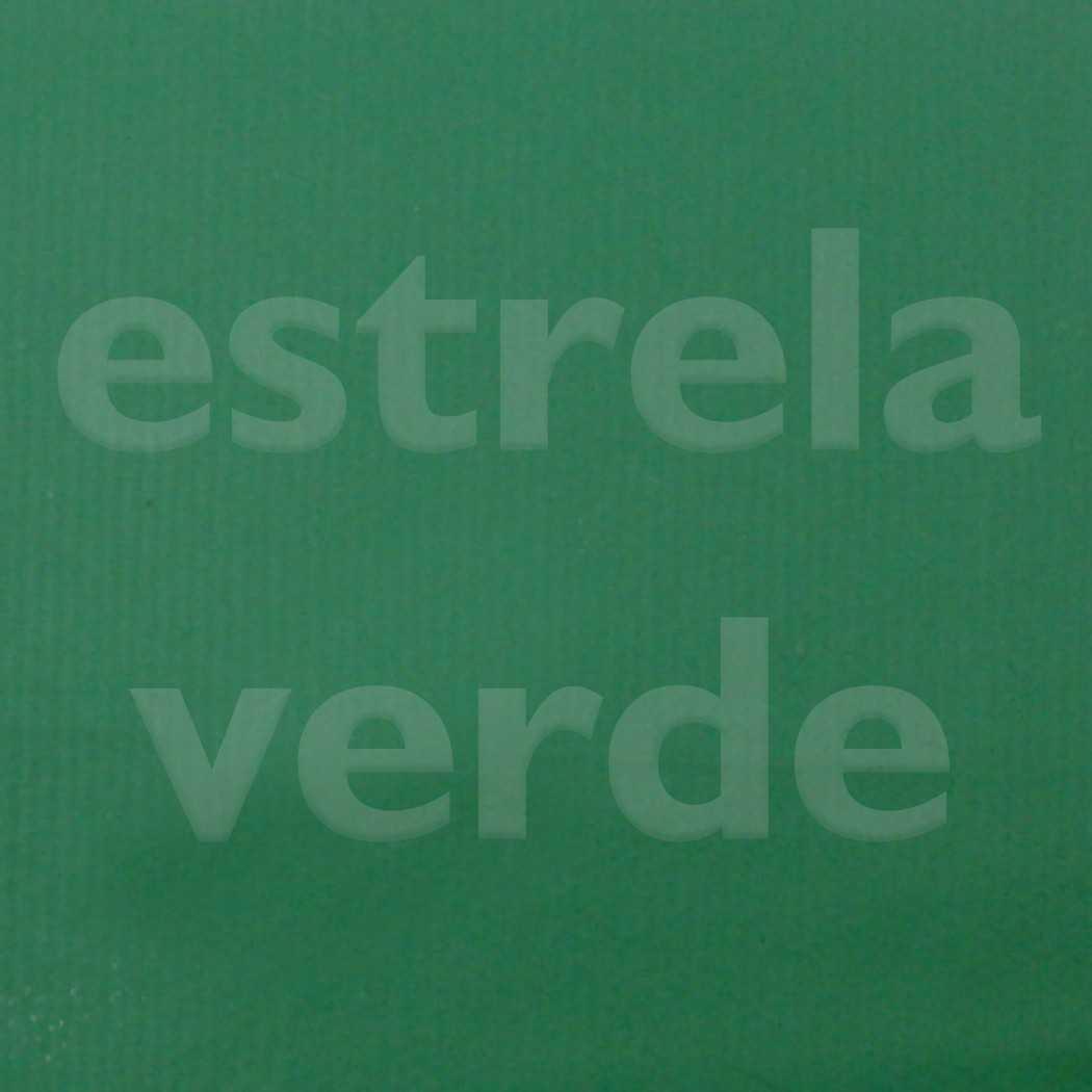 BAGUN VERDE BANDEIRA 030  - Estrela Verde