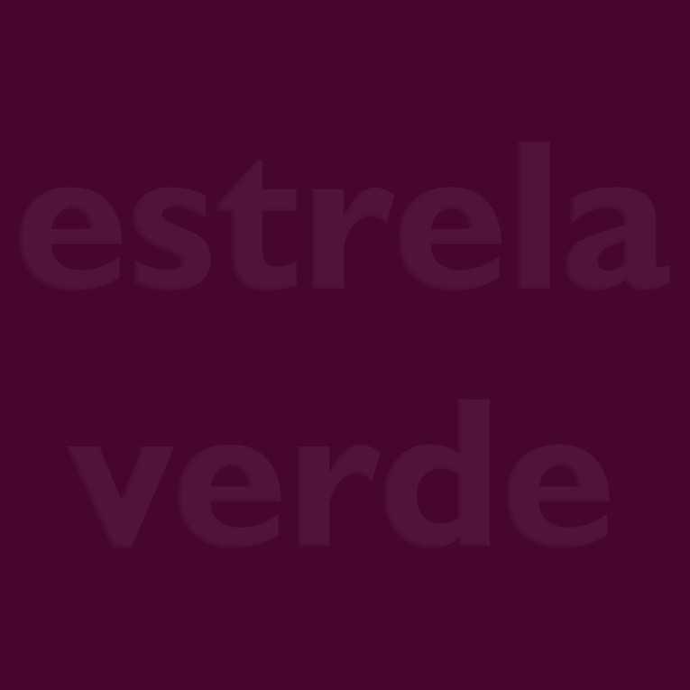 FELTRO BORDO/VINHO (20)  - Estrela Verde
