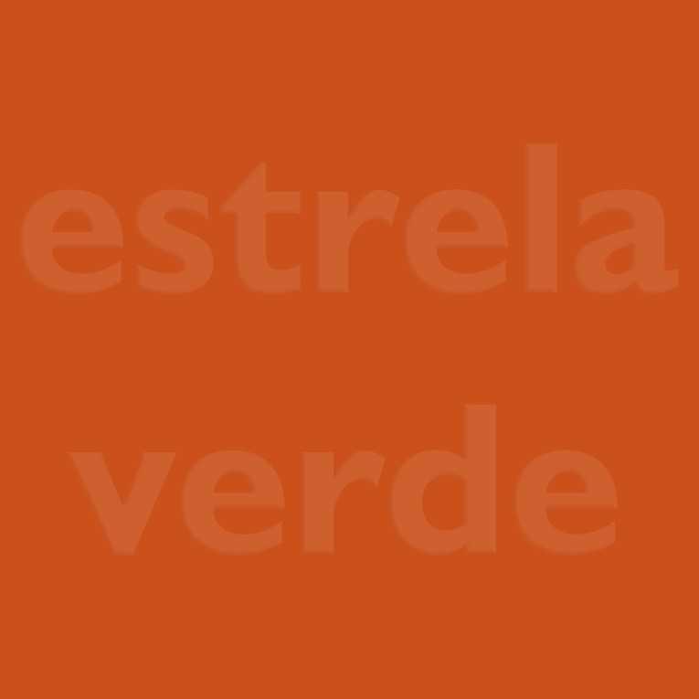 FELTRO LARANJA (13)  - Estrela Verde