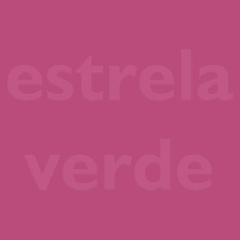 FELTRO ROSA PINK (16)  - Estrela Verde