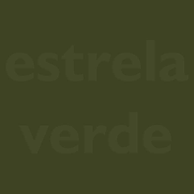 FELTRO VERDE OLIVA (52)  - Estrela Verde
