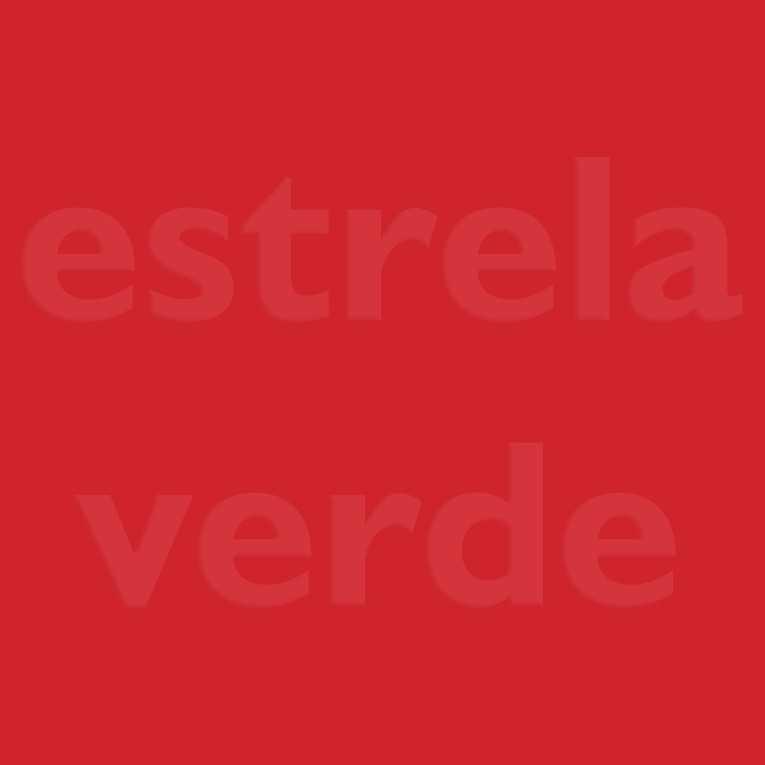 FELTRO VERMELHO NOEL (65)  - Estrela Verde