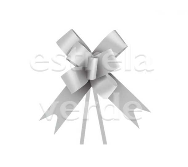 LACO PRONTO/LISO PRATA 23MM 10UN  - Estrela Verde
