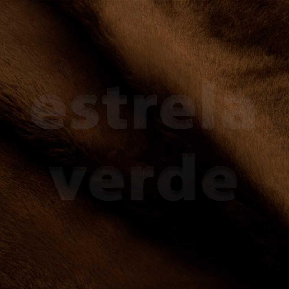 PELUCIA FIO CURTO CHOCOLATE 12MM 1,60 LARG  - Estrela Verde