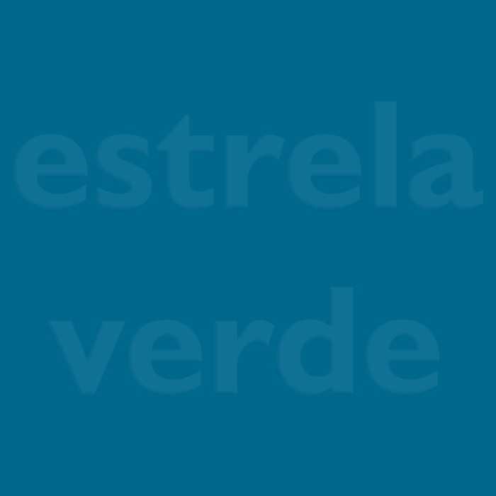VELUDO SOFISTICADO PRATA 03 DESCONTINUADO  - Estrela Verde