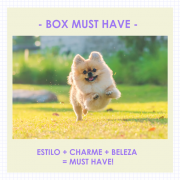 Box Must Have  - Assinatura