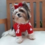 Casaco Esportivo Plush Vermelho com capuz