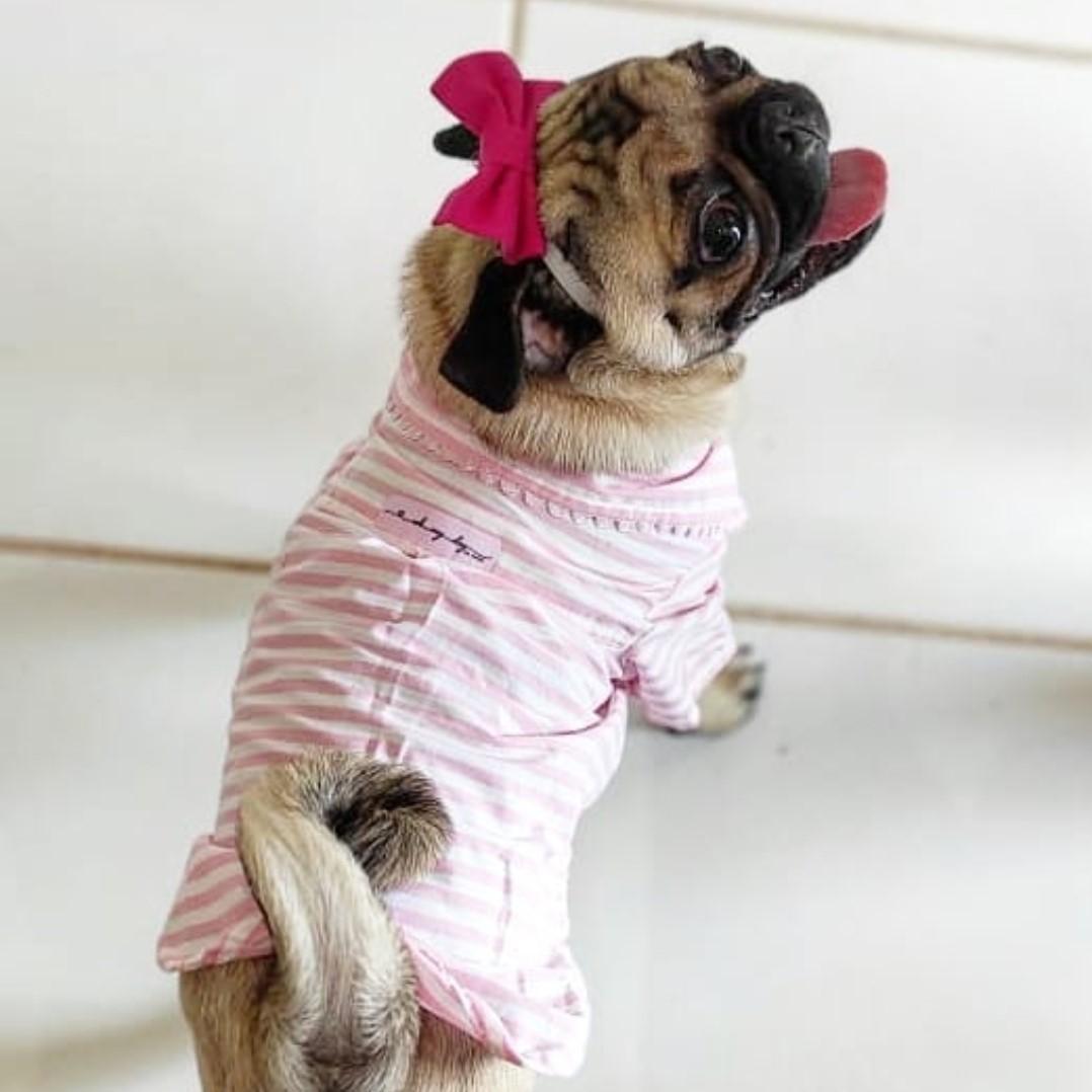 Camisa Social Zoe
