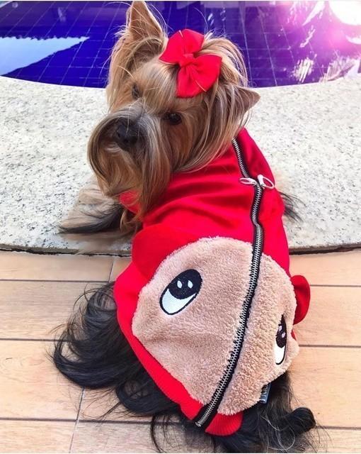 Jaqueta Alfredinho Vermelha