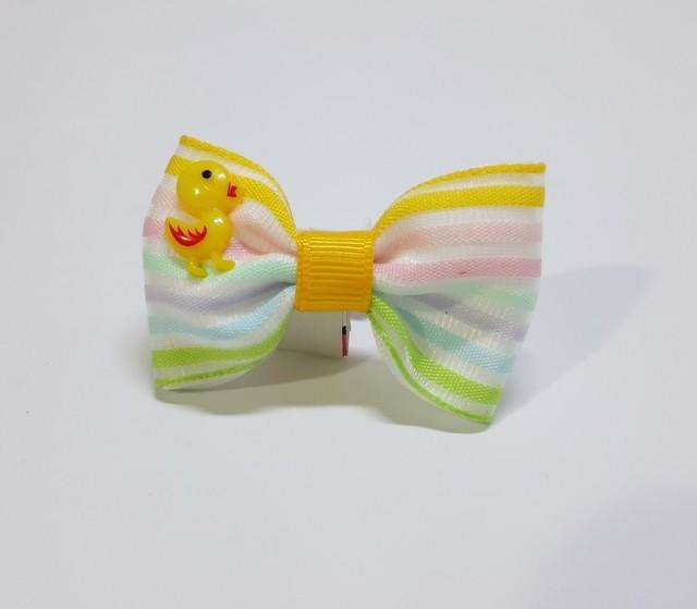 Laço Duck