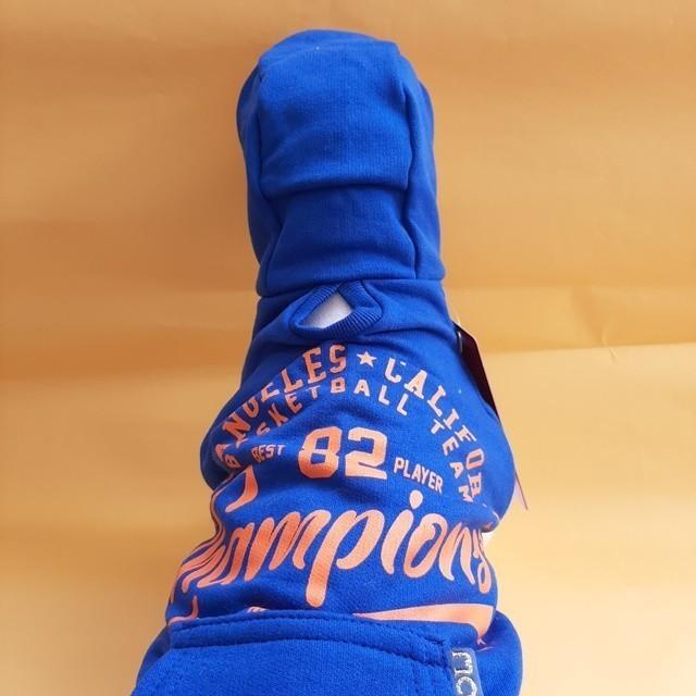 Moletom Champions