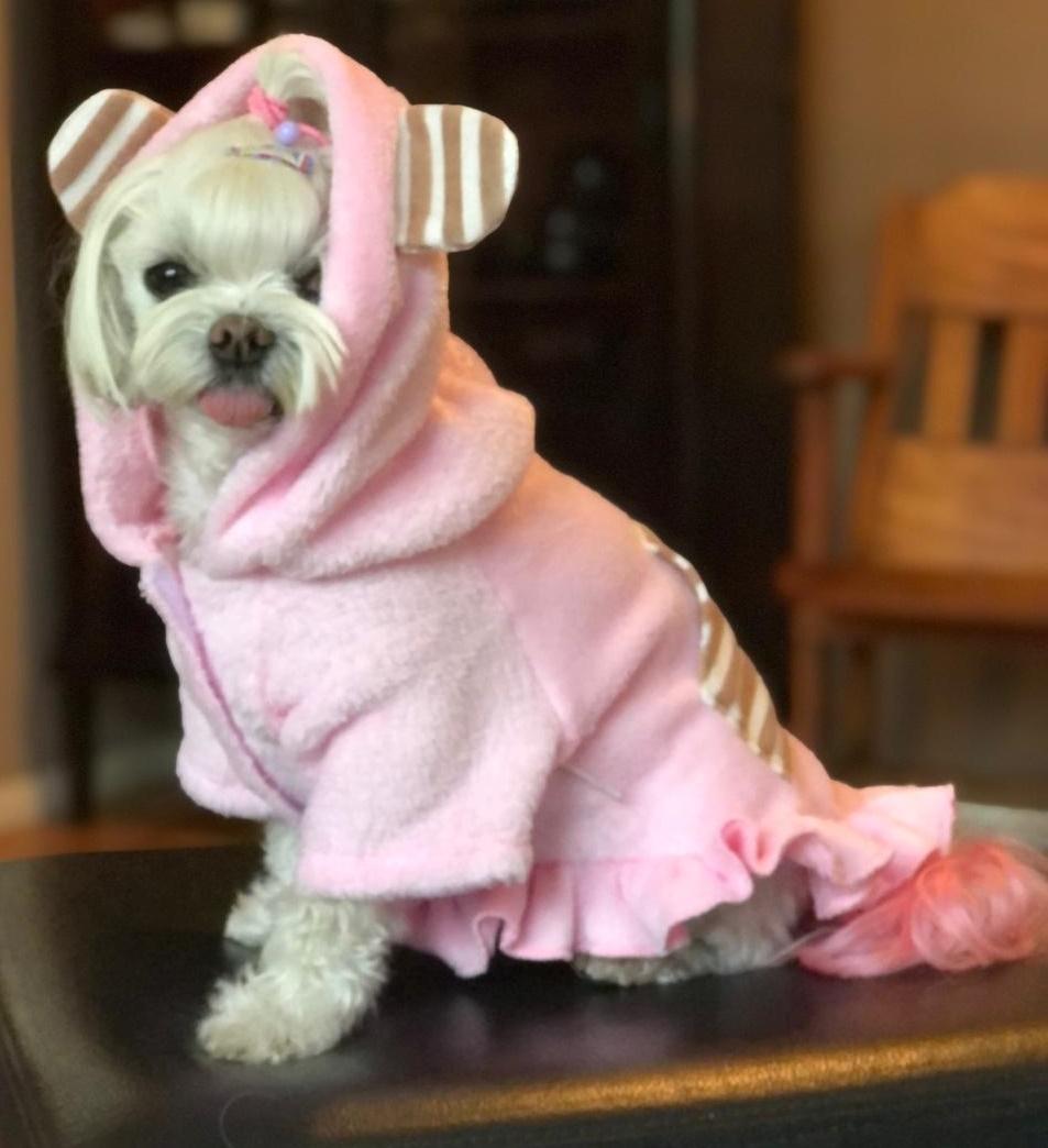 Vestido Cute Bear