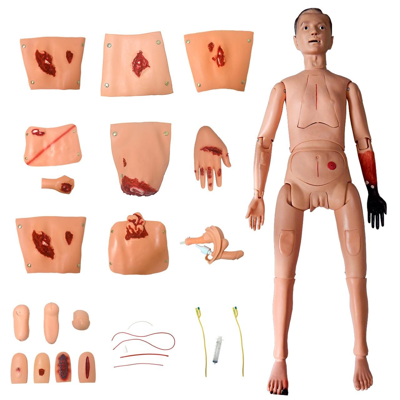 Manequim Bissexual com Órgãos Internos, Simulador para Cuidados de Enfermagem e Trauma