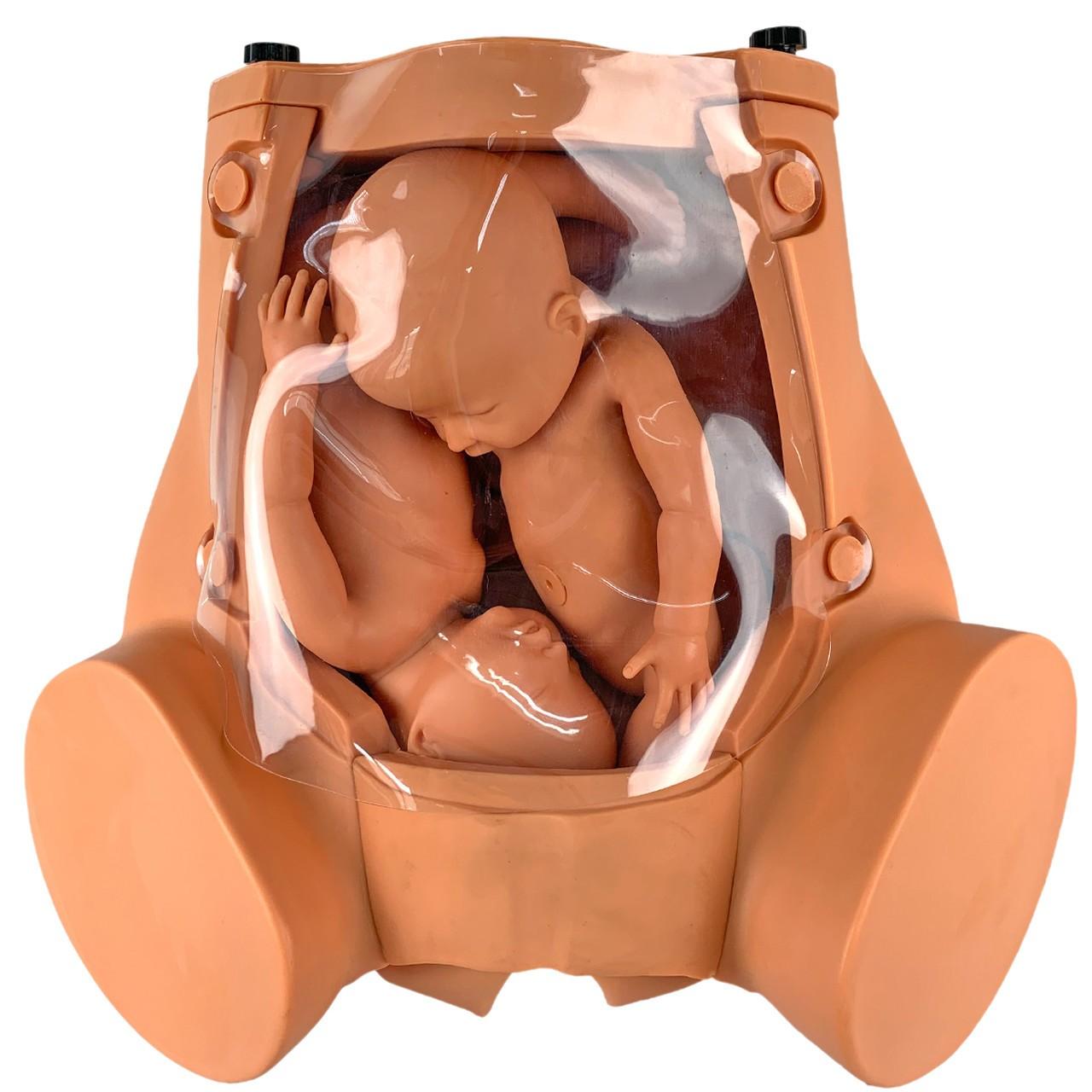 Simulador de Parto Gemelar, com Placenta