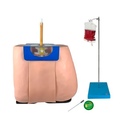 Simulador para Treino de Punção e Infusão Lombar