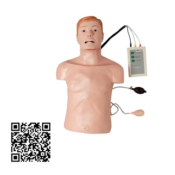 Simulador, Torso Adulto para Treino de RCP e Intubação