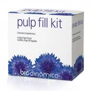 Biodinâmica Cimento Endodôntico Pulp Fil