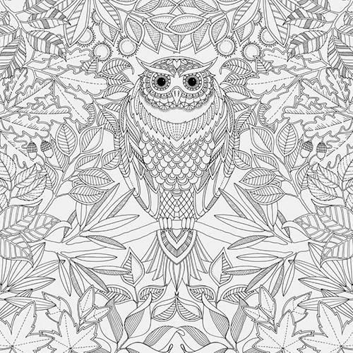 Kit - Livro para Colorir Antiestresse Jardim Secreto + Lápis Cor 60 Cores Aquarela Faber-Castell