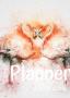 Planner Estrelari 2021 2022 Flamingo