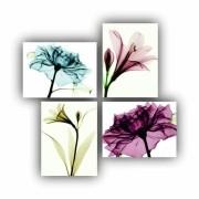 Kit Flor Desenhada Cores Nude - 4 telas