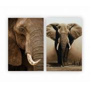 Quadro Elefante Africano luxo -  Kit 2 telas