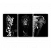 Quadro Animais Selvagens Impacto Luxo Coleção Savana Decor - Kit 3 telas