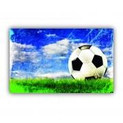 Quadro Apaixonados por Futebol Bola - Tela Única