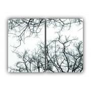 Quadro Árvore Folhas Secas Calmaria e Paz  -  Kit 2 telas