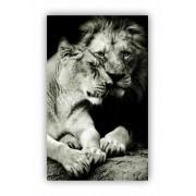 Quadro Casal Leão Amor - Tela Única