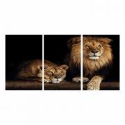 Quadro Casal leão Luxo - Kit 3 telas