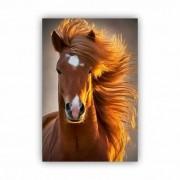 Quadro Cavalo Fotogênico - Tela Única