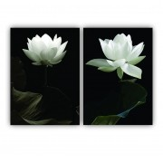 Quadro Flores Modernas Preto e Branco  -  Kit 2 telas
