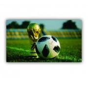 Quadro Decorativo futebol Troféu- Tela Única
