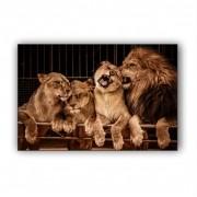 Quadro Família Leão Luxo - Tela Única