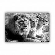 Quadro Família Leão Preto e Branco Horizontal - Tela Única