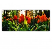 Quadro Flores Coral Floresta Colors - Kit 3 telas