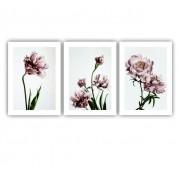 Quadro Flores Rose Nude Delicado - Kit 3 telas