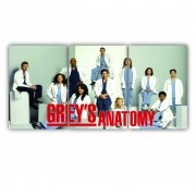 Quadro Greys Anatomy - Kit 3 telas