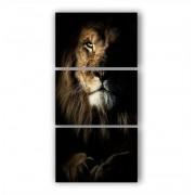 Quadro Leão da Tribo  de Judá Vertical - Kit 3 telas
