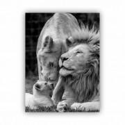 Quadro Leão Leoa e filhote - Tela Única