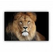 Quadro Leão Rei dos Reis Horizontal - Tela Única