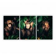 Quadro Macacos Sábios Colorido Animal Divertido - Kit 3 telas