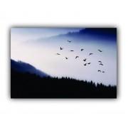 Quadro Neblina Pássaros Calmaria e Paz - Tela Única