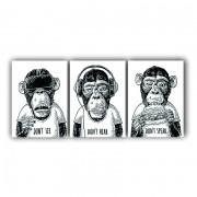 Quadros Macacos Sábios Moderno - Kit 3 Tela